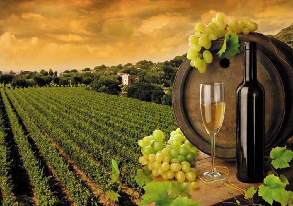 Ценовые категории французских вин