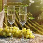 Лука Марони, човек, попробовавший више 123 000 вина